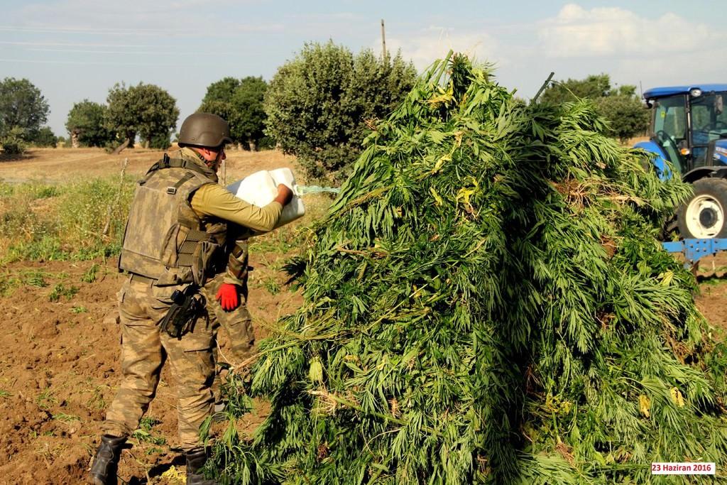 Diyarbakır Lice'de büyük uyuşturucu operasyonu!
