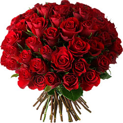 Livraison De Fleurs Saint Valentin Avec Aquarelle