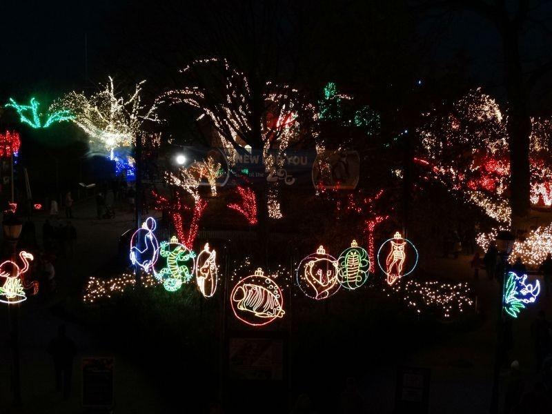 Toledo Zoo Lights Hours