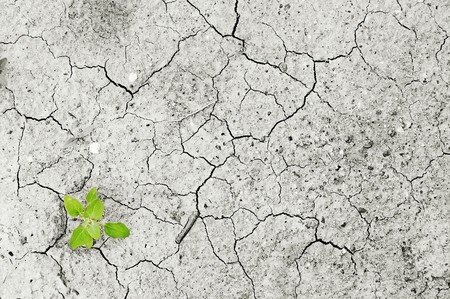 El Cambio Climatico Es Ya Muy Palpable Pero La Burbuja Del Carbono Puede Traer Un Shock Financiero Mundial 5
