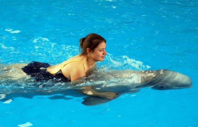 Delfin Humano