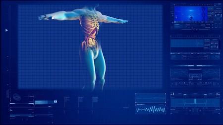 Human Digestive System 163714 1280