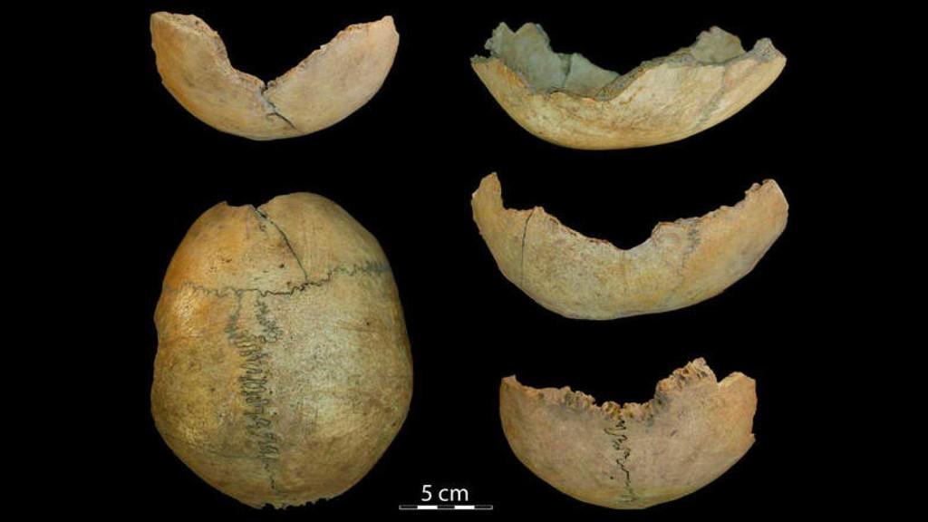 Permalink to Cráneos tallados con forma de copa, prácticas caníbales y otras cosas que se hacían en Málaga hace 7.000 años