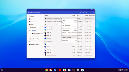 Chromeos Linux 19