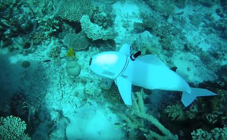 Dieser Roboterfisch vom MIT wäre fast ein echter Fisch und wird mit einem S-Controller gesteuert