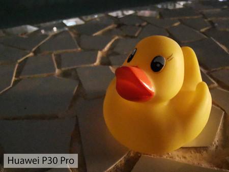 Huawei P30 Pro Macro Noche 01