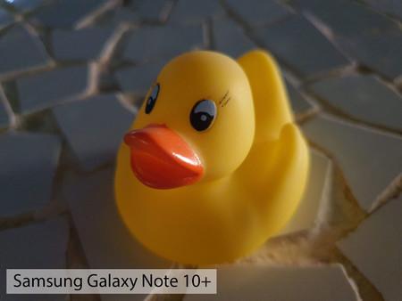 Samsung Galaxy Note 10plus Macro Noche 01
