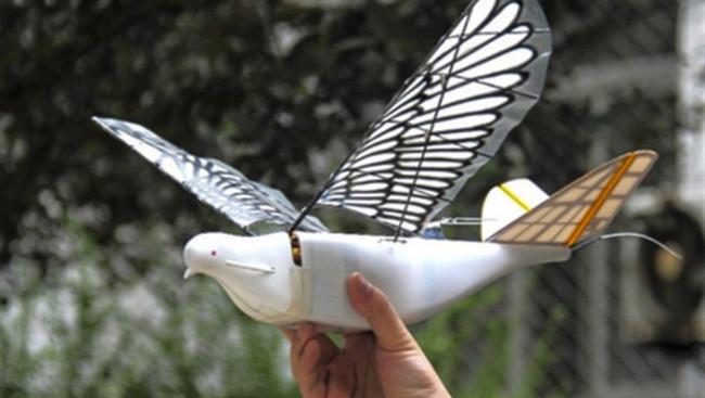 Permalink to China posee un nuevo sistema de vigilancia masiva basado en aves robóticas