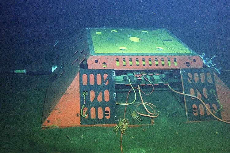 Uno de los cables submarinos de Internet fue usado con éxito para detectar terremotos, según la Universidad de Berkeley
