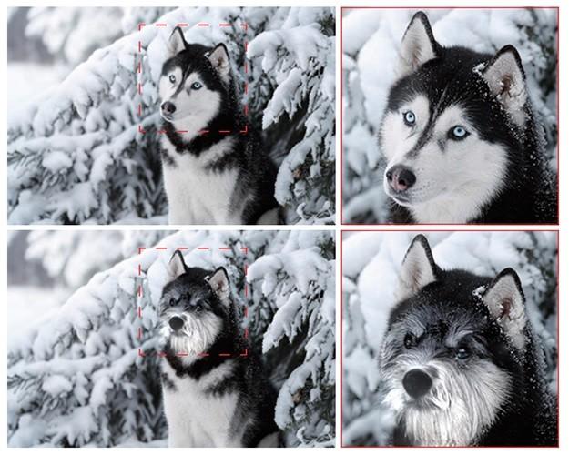 Poner a la imagen de tu husky el hocico de un bulldog y el gesto de tu gato ya es factible (y fácil) gracias a la IA