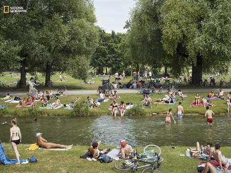 Munich Park Sunbathers