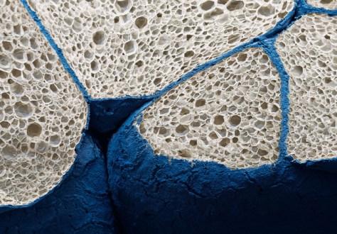 Materiales bajo microscopio