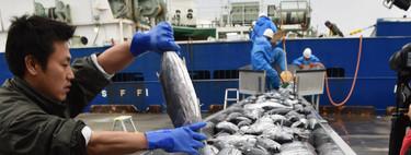 Fukushima contra sus pescadores: el agua radioactiva de la central amenaza con hundir su industria