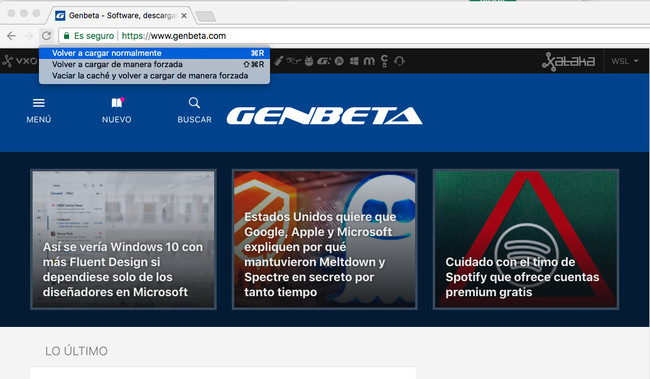 Recarga Forazada De Paginas Chrome