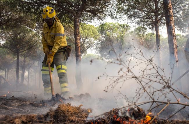 Permalink to Drones, robots y satélites contra el fuego: las nuevas tecnologías tienen un papel fundamental en los incendios forestales