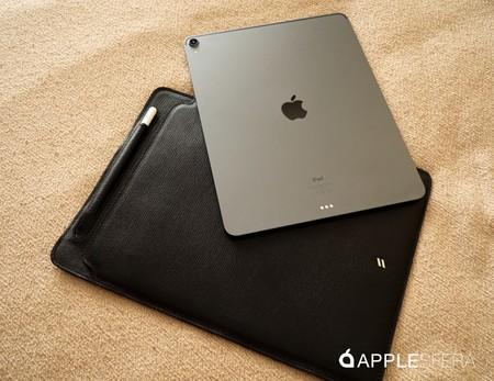 iPad case suritt Corteccia