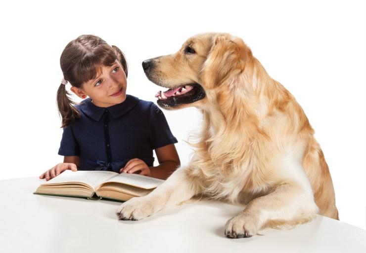 Cómo los perros ayudan a leer a niños con dificultades