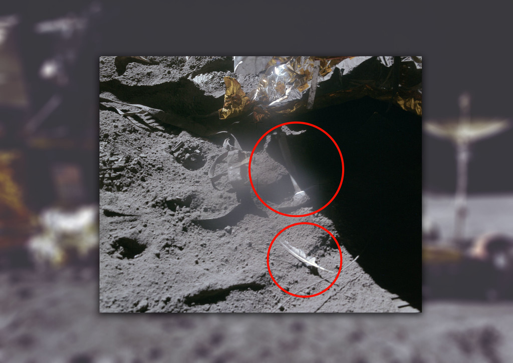 Permalink to La historia de la pluma y el martillo que un astronauta dejó caer en la Luna en homenaje a Galileo