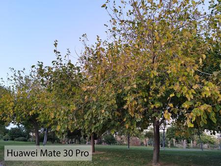 Huawei Mate 30 Pro Auto Dia 02