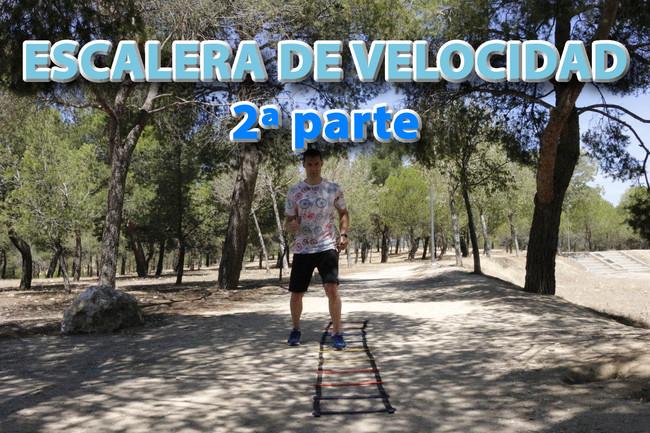 Escalera Velocidad Vitonica 2