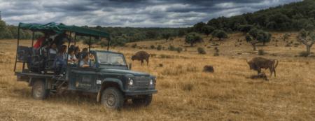Paleolitico Vivo Safari