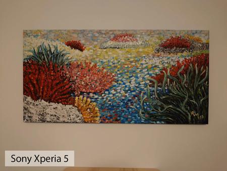 Sony Xperia 5 Auto Int 02