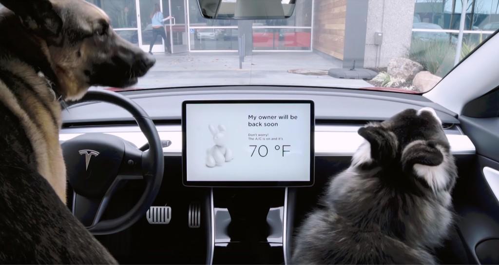 Permalink to Modo Perro y música a todo volumen para evitar robos: las nuevas actualizaciones de Tesla para sus coches