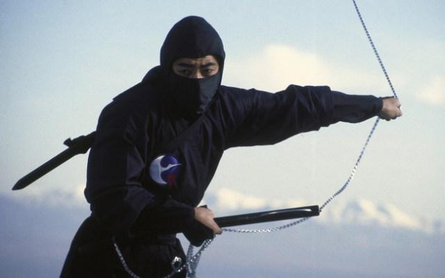 Ninja Japon