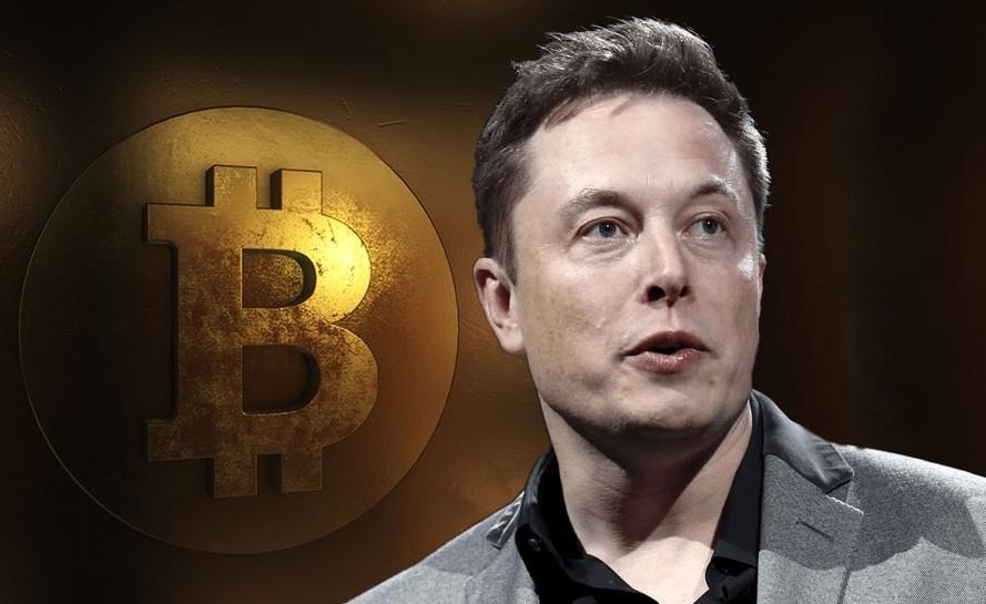 El último fraude con bitcoin demuestra que continua habiendo decenas de Elon Musk falsos en Twitter® tratando robarte el dinero