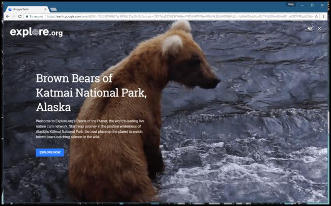 Permalink to Ahora puedes mirar vídeos de la naturaleza en tiempo real desde Google Earth