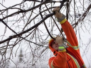 Toronto Hydro says it is receiving assistance from a number of other utilities, including Hydro Ottawa, Sault Ste. Marie PUC, Enwin (Windsor) and Manitoba Hydro.