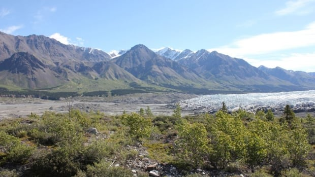 Eco-resort planned for remote area of Yukon's Kluane National Park | CBC News