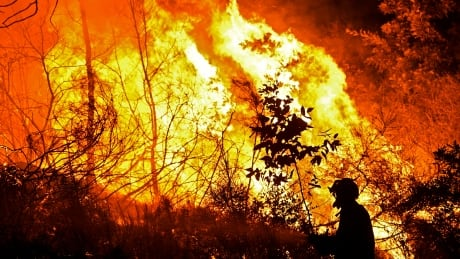 PORTUGAL BAIAO FOREST FIRE firefighter flames