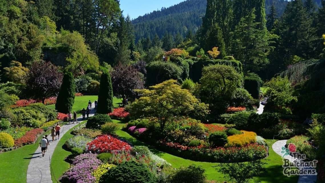 Image Result For Butchart Gardens