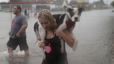 Harvey storm