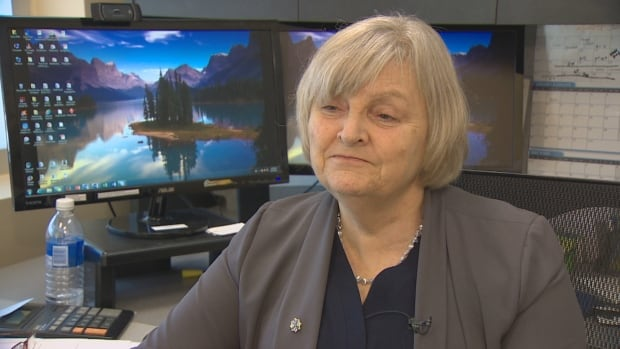 Gerry Mills is the executive director of ISANS, the province's largest settlement agency. (CBC)