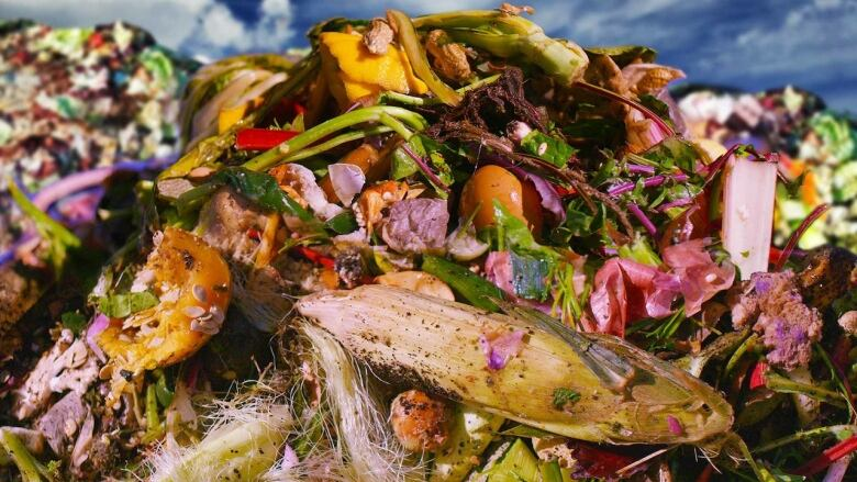 Grocers, innovators work to save $31B in food from being trashed in Canada each year food waste