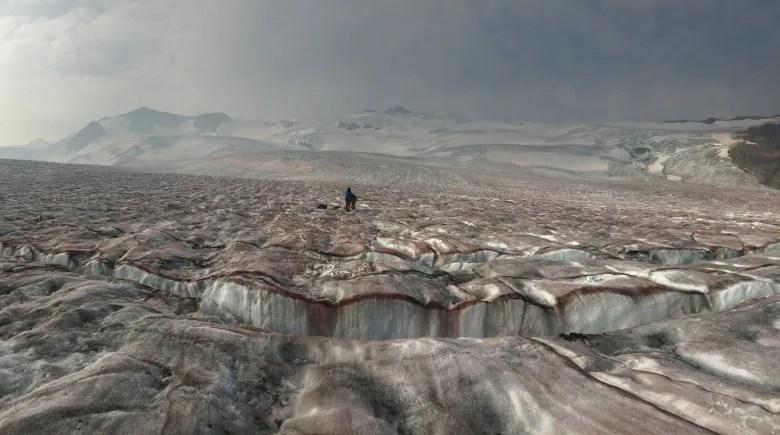 Darkening glaciers: Scientists examine wildfire effect on Canadian ice darkening glacier