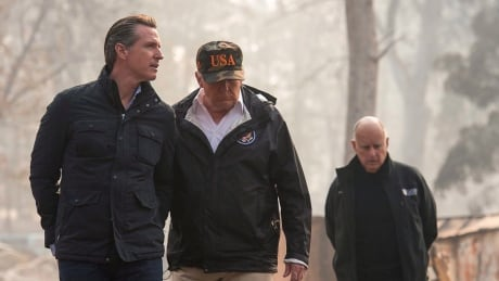 Trump Newsom Brown Wildfires