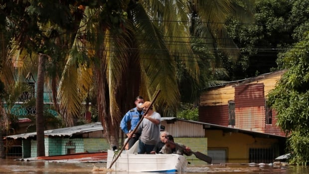 Cayman Islands, Cuba in path of Eta after hurricane kills at least 50 in Central America | CBC News