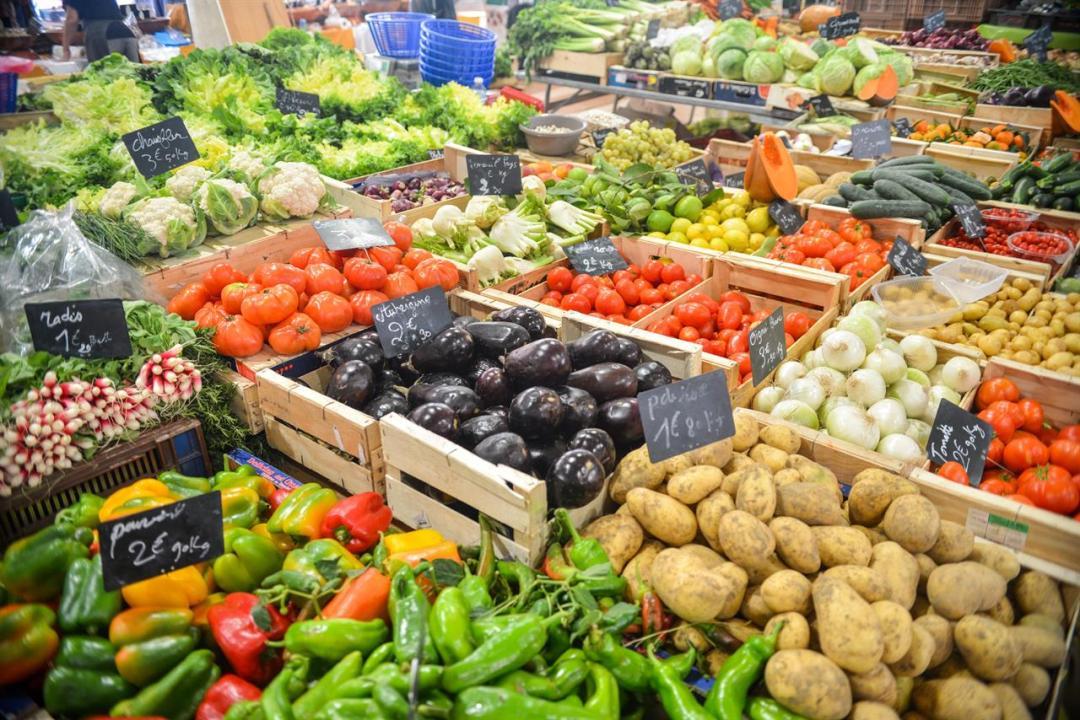 Aubergines Bio Cabbage 5205 (1) Pexels