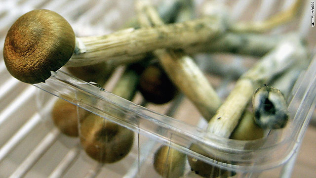 "A new study shows that psilocybin, the active ingredient in ""magic mushrooms,"" may help terminally ill cancer patients get some relief from anxiety."