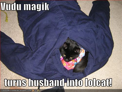 Vudu magik  turns husband into lolcat!