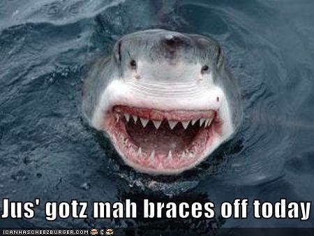 Jus Gotz Mah Braces Off Today Cheezburger Funny Memes Funny