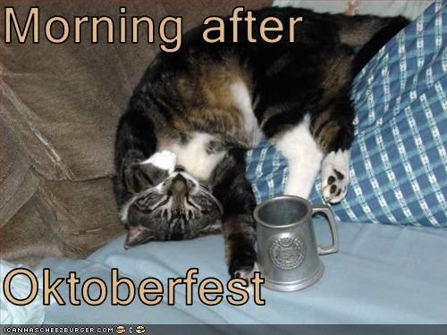 Morning After Oktoberfest Cheezburger Funny Memes Funny Pictures