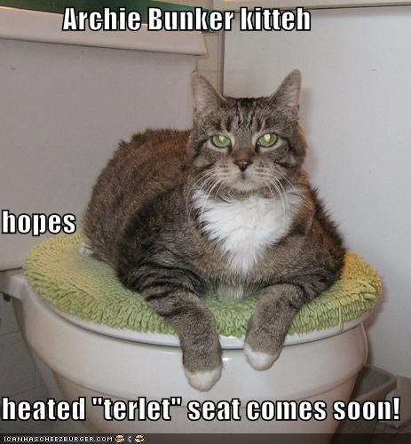 Archie Bunker Kitteh Hopes Heated Terlet Seat Comes Soon