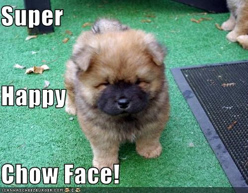 Super Happy Chow Face Cheezburger Funny Memes Funny Pictures