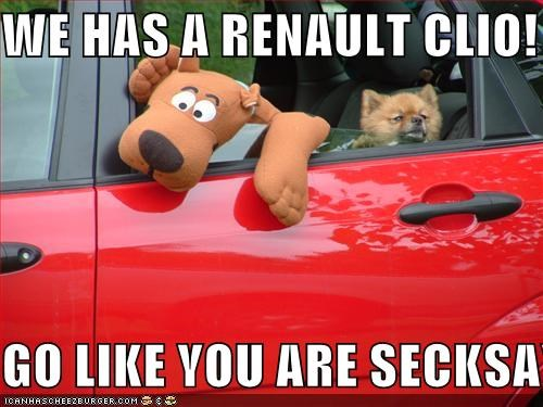 We Has A Renault Clio Go Like You Are Secksay Cheezburger