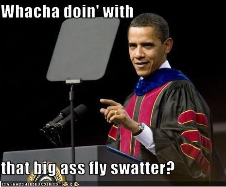 Whacha Doin With That Big Ass Fly Swatter Cheezburger Funny