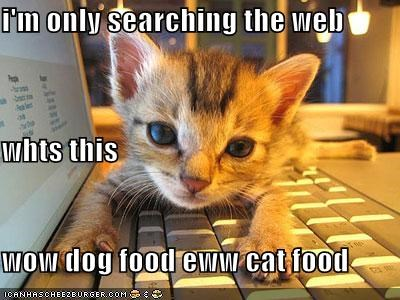 I M Only Searching The Web Whts This Wow Dog Food Eww Cat Food